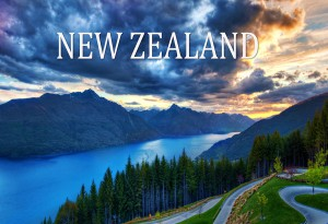 Migration to New Zealand increased