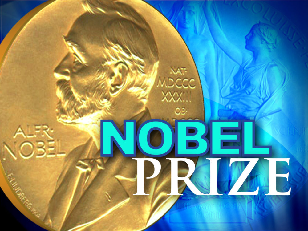 What does the nobel peace prize look like 11