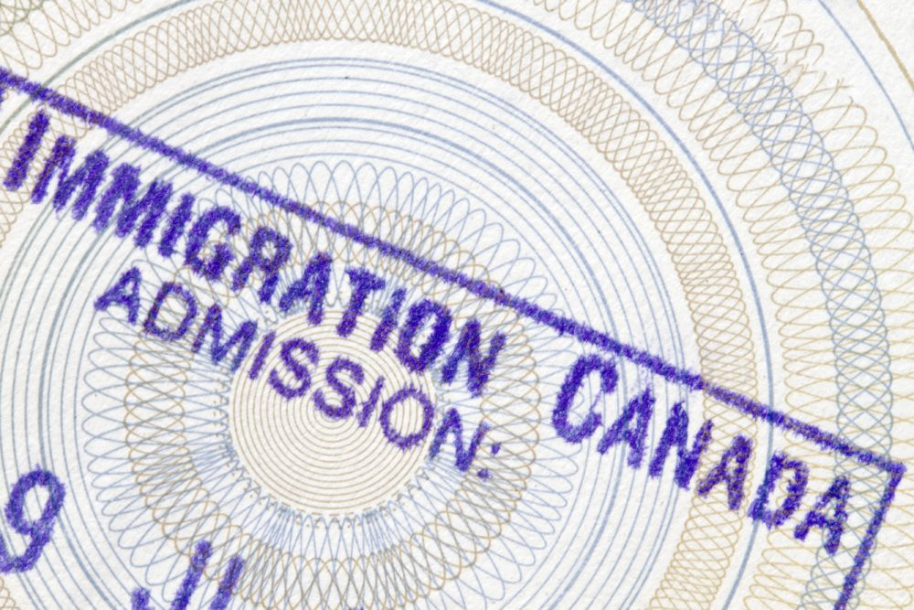 an overview of the economic problems with high level of immigration of canada The missing link: gender, immigration policy and  economic and immigration reality in canada,  socio-economic status: despite their high level of.