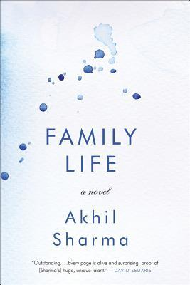 """Family Life"" by Indian-American Novelist"