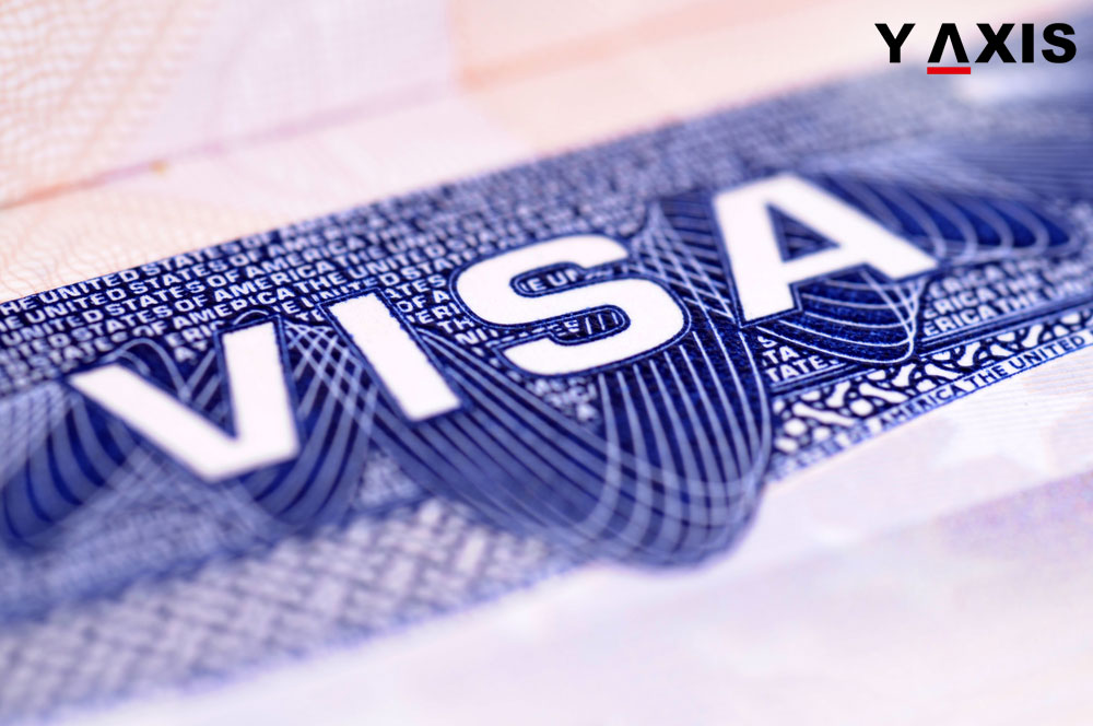 visa reforms will include curbing the H1-B visas and this will affect several highly skilled IT professionals in India